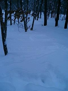 image/akane-papa-2006-01-08T06:58:31-1.jpg