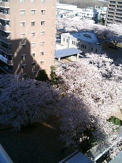 image/akane-papa-2006-03-31T08:37:16-1.jpg
