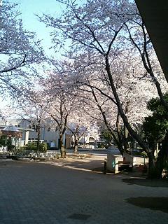 image/akane-papa-2006-03-31T08:38:01-2.jpg